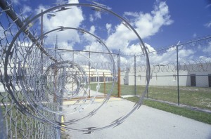 Federal Prison Authority Provides A Federal Courts Overview